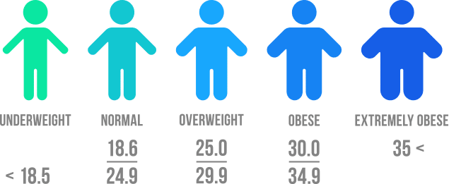 illustration of the body mass index (BMI) chart